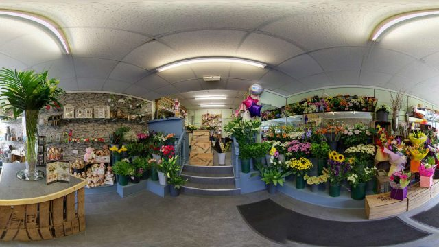 Buttercups And Daisies Manchester Google Virtual Tour